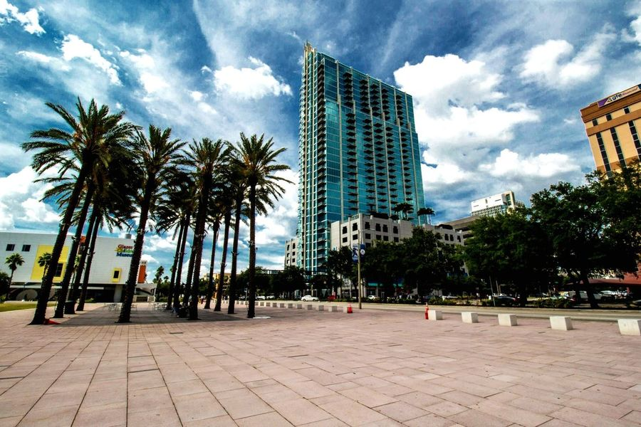 Cityscapes Tampa