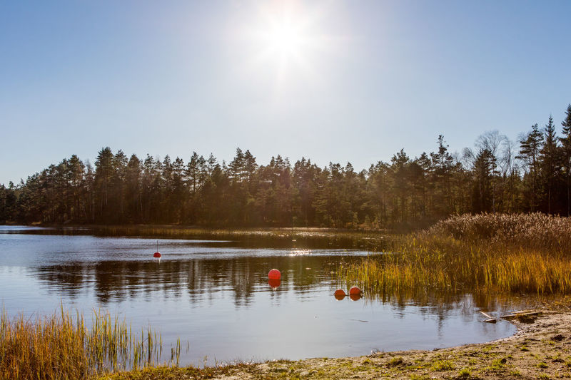 Autumn Beauty In Nature Bouy Clear Sky Lake Nature No People Outdoors Reflection Sun Sweden Water