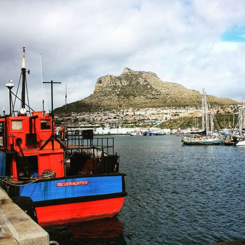 Red And Blue Hout Bay Water Nautical Vessel Sea Harbor Mountain Moored Beach Red Trawler Fishing Boat Anchored Marina