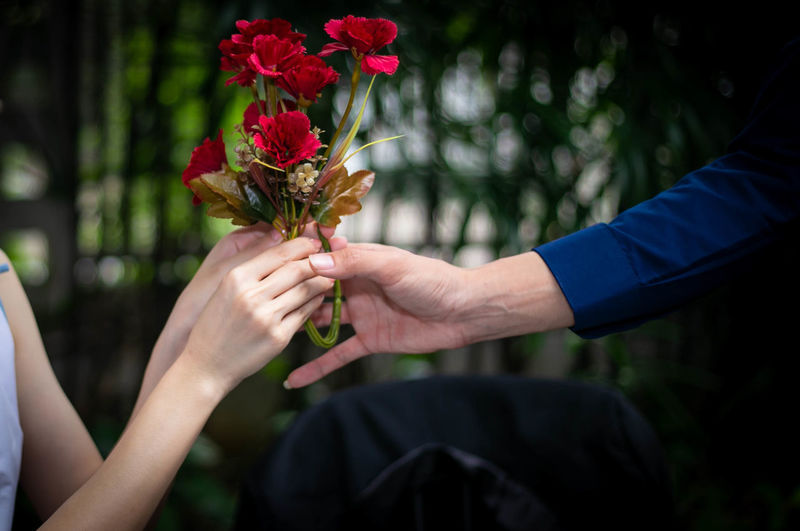 Close up of woman hand got red roses from her boyfriend.