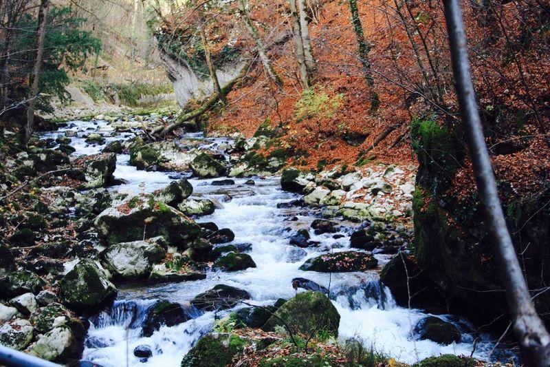 Relaxing River Showcase: February Water