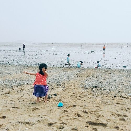 Mudflat 마시안해변