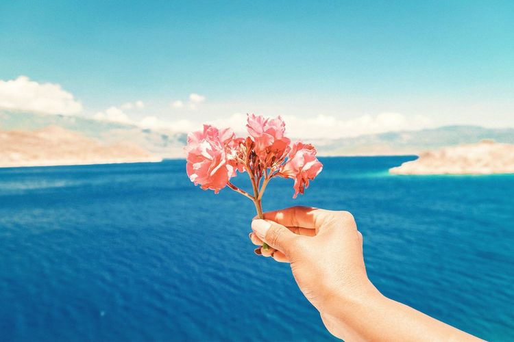 Close-up of hand holding flowering plant against sea