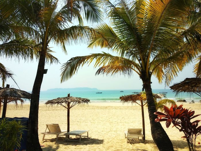 Welcome to Paradise Beach Sea Tree Sand Horizon Over Water Water Tranquility Nature Palm Tree Tranquil Scene Summer Vacations