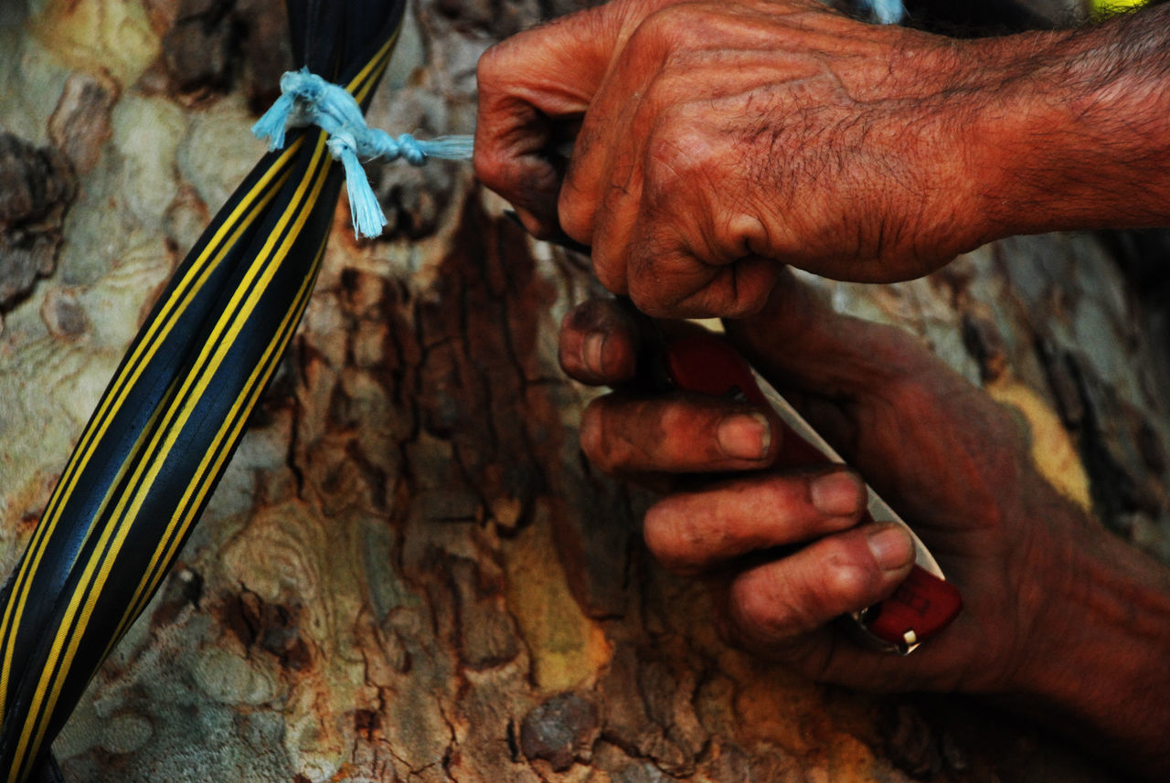human hand, human body part, one person, skill, art and craft, creativity, working, holding, workshop, indoors, expertise, carving - craft activity, men, close-up, occupation, artist, real people, hand tool, craftsperson, day, one man only, only men, adult, people