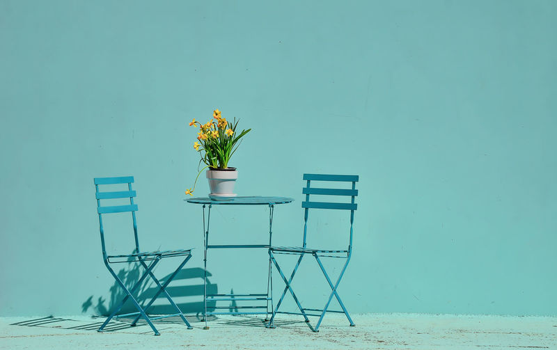 turquoise daffodils on table Arrangement Beauty In Nature Blue Bouquet Bunch Of Flowers Chair Copy Space Flower Flower Arrangement Flower Head Flower Pot Flowering Plant Fragility Freshness Growth Nature No People Outdoors Plant Potted Plant Seat Table Vase Vulnerability  Wall - Building Feature