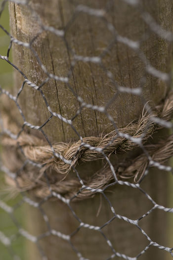 Fence around wooden post Agriculture Photography Close Up Close-up Day Focus On Foreground Galvanized Hexagonal Metal No People Old Outdoors Protection Rope Rusty Security Selectiv Focus Sisal Rope Wire Wooden Post