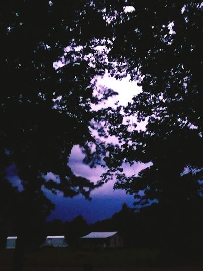 Lighting Up The Night... This Thunderstorm Turnte Night Into Day Beauty Can Be Dangerous Heat Lightning Stormy Sky Tree Astronomy Star - Space Pixelated Sky