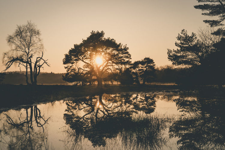 Beauty In Nature Day Lake Leersumse Plassen Leersumse Veld Nature No People Outdoors Reflection Scenics Silhouette Sky Sun Sunlight Sunset Tranquil Scene Tranquility Tree Water