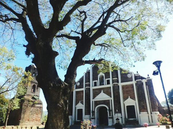 Sta. Monica Church, Ilocos Sur Architecture Building Exterior Tree Nature