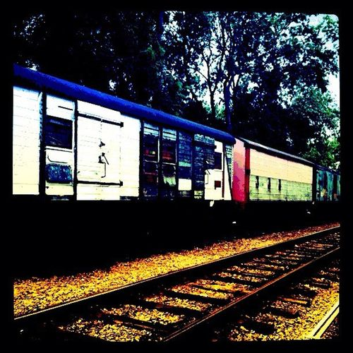 Vintage train #travel #brixworth #bramptonvalleyway #ig #the100club #1002901 #insta100club Travel Ig The100club Bramptonvalleyway 1002901 Brixworth Insta100club