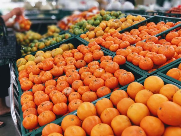 orange fruit in market Abundance Arrangement Choice Close-up Day Focus On Foreground Food Food And Drink For Sale Freshness Fruit Healthy Eating Large Group Of Objects Market Market Stall No People Orange Color Orange Fruit Outdoors Price Tag Retail  Vegetable