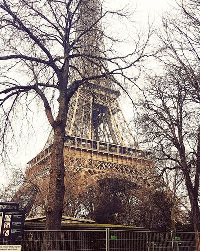 Paris 2016 EyeEmNewHere No People 2016eifel Tower Eiffel Tower Low Angle View Tree Silhouette Bare Tree Nature Sky Autum In Paris Different Perspective France 🇫🇷 Paris