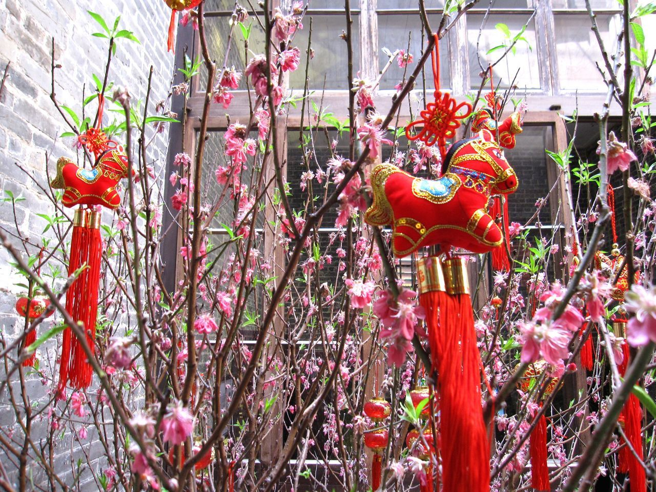 animal representation, hanging, chinese new year, no people, tree, day, growth, celebration, outdoors, dragon, plant, chinese dragon, nature, close-up