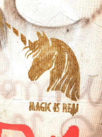 Magic is real! Close-up Day Wall Street Art On The Walls Unicorn Art Unicorn Head Unicorns Are Real Gold Colored