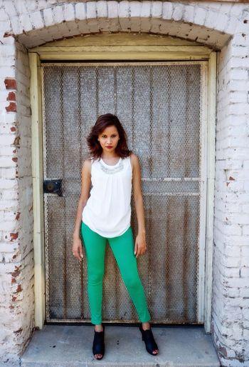 Shalini Beautiful Door Metro Modeling
