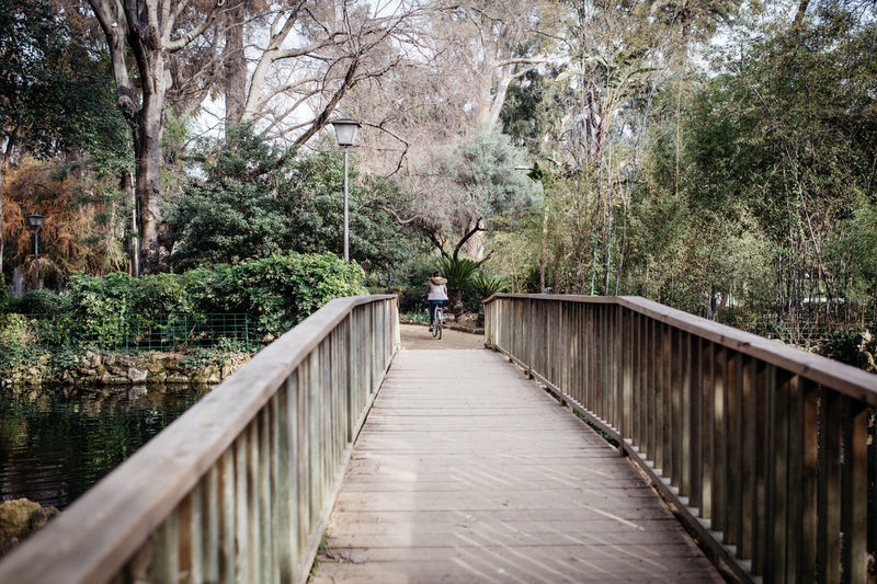 Footbridge amidst trees in park