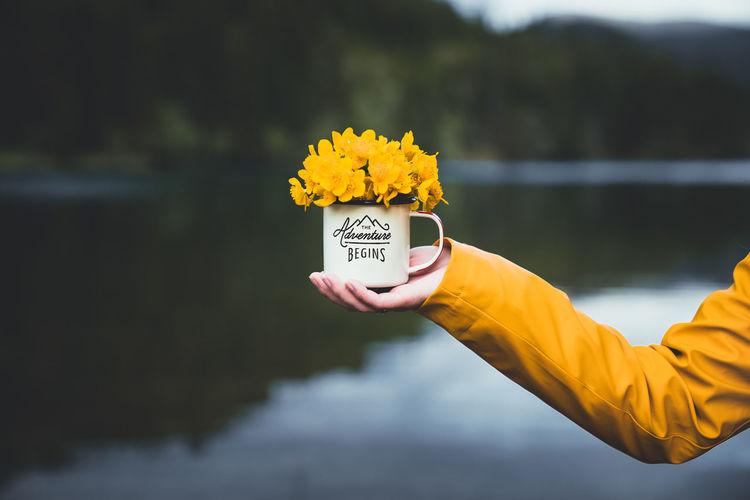 Close-up of hand holding mug with yellow flower against blurred background