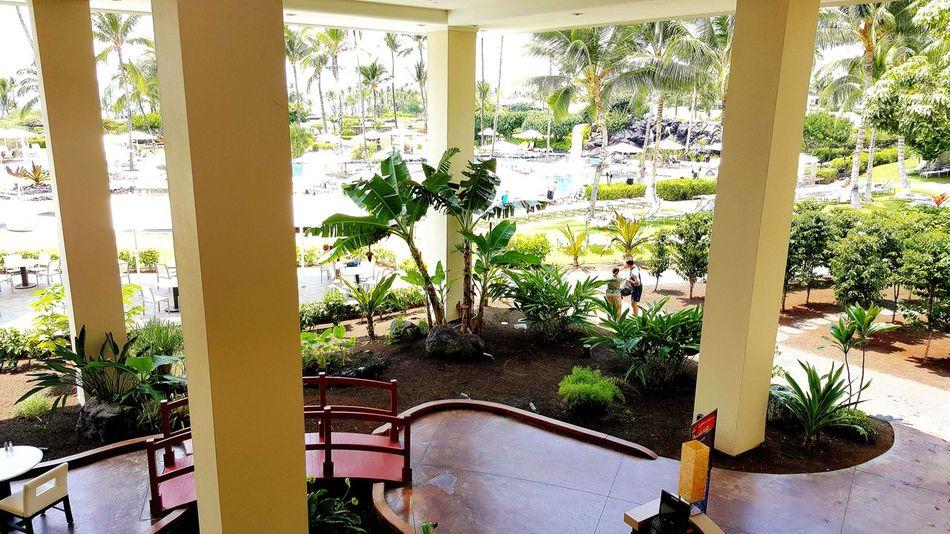 Hawaii The Big Island Travel Traveling