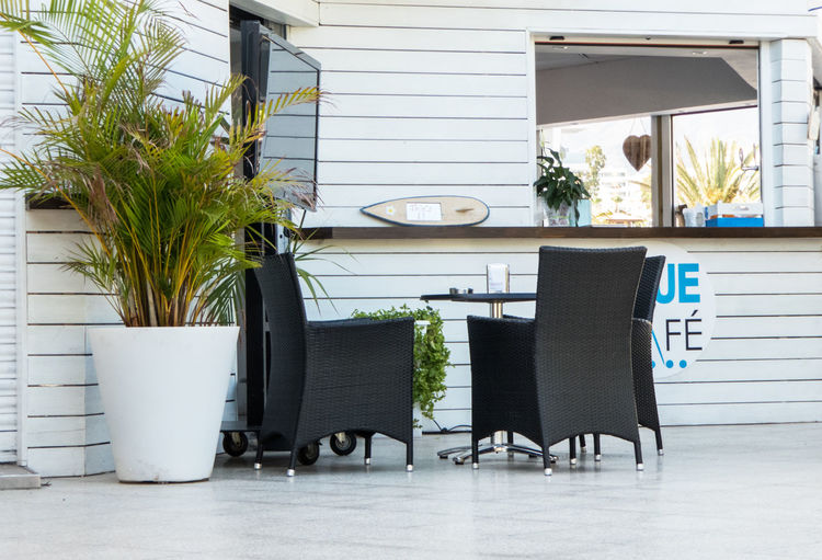 Terrace of a coffeshop. Chairs and table. Architecture Bar Chairs Coffeshop Day Decor Decoration Indoors  No People Plant Potted Plant Pub Terrace White