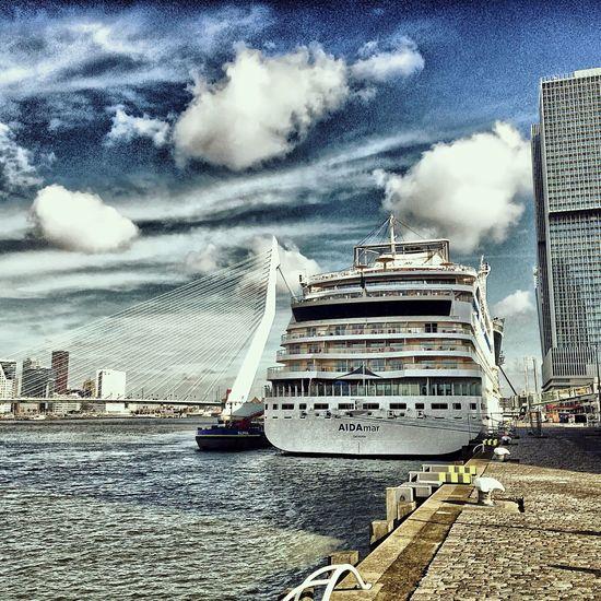 Aidamar Erasmus Bridge Erasmusbrug Rotterdam Igersrotterdam Igersholland Nederland Holland Instawalk010 NLRTM Maas Cruise Ship Derotterdam