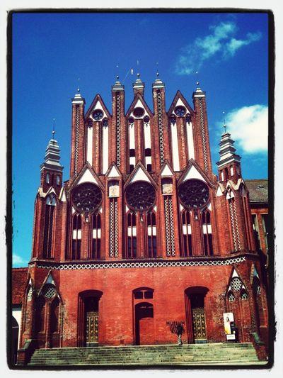 Museum Of Modern Art Young Artist Rathaus