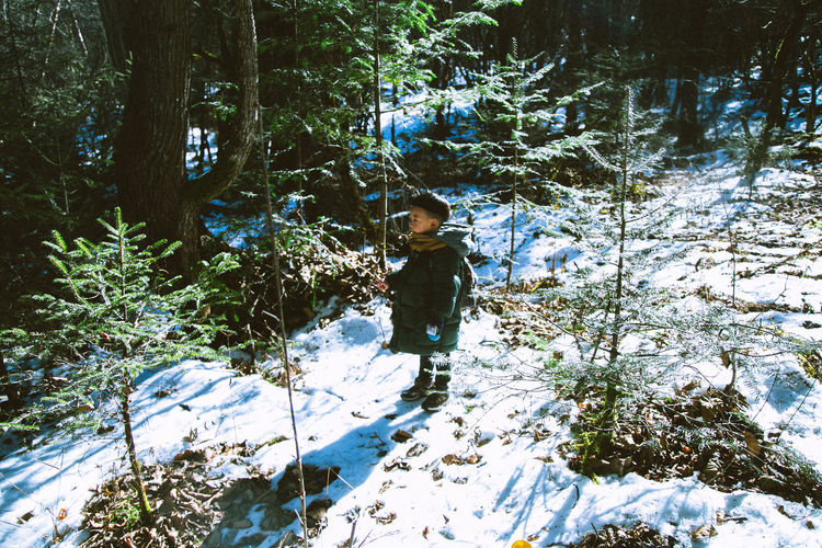 Boy Standing By Tree In Forest During Winter