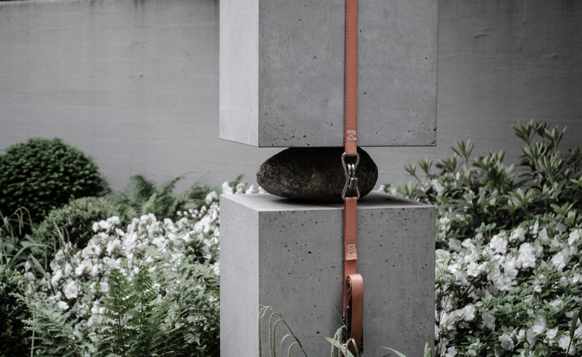 Berlin Power Stress Animal Themes Architecture Built Structure Concrete Day Garden Gray Growth Nature No People One Animal Plant Sculpture Strong Wall - Building Feature