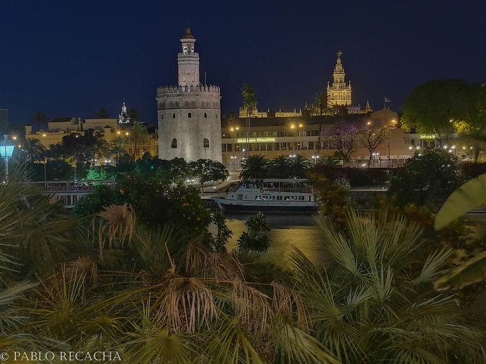 Giralda Giraldillo Torre Del Oro Sevilla Seville Sevilla Spain