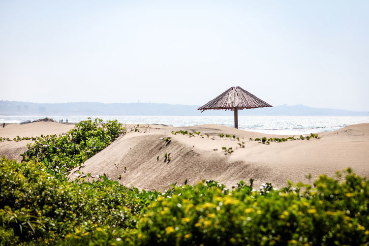Secluded beach Secluded Beach Beach Beach Umbrella Seaside Sand Dune Seascape Sea Land Sky Water Thatched Roof Clear Sky Tranquility Day No People Sand Outdoors Scenics - Nature Sea Sand Plant Tranquil Scene Copy Space