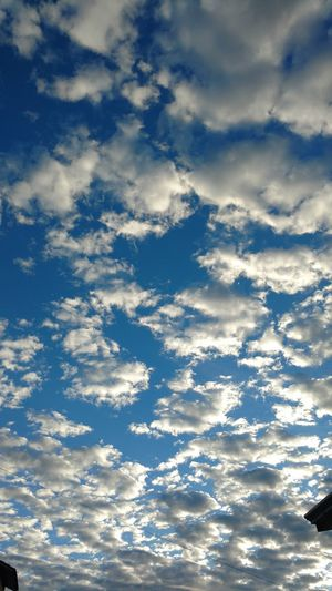 Cloud - Sky Blue Nature Cloudscape Outdoors Tranquility Sky Beauty In Nature No People Day Scenics Backgrounds Landscape Sea Water Beauty