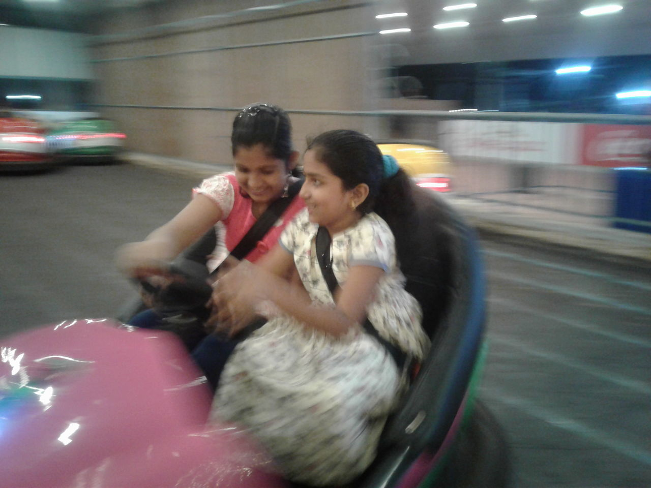 transportation, real people, mode of transport, two people, land vehicle, togetherness, lifestyles, love, domestic animals, animal themes, happiness, bonding, pets, young women, mammal, day, outdoors, young adult