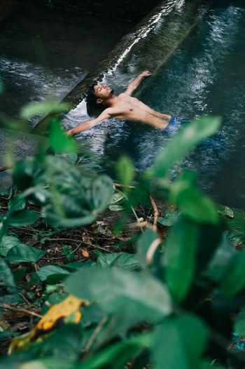 Shirtless Man Swimming In Lake