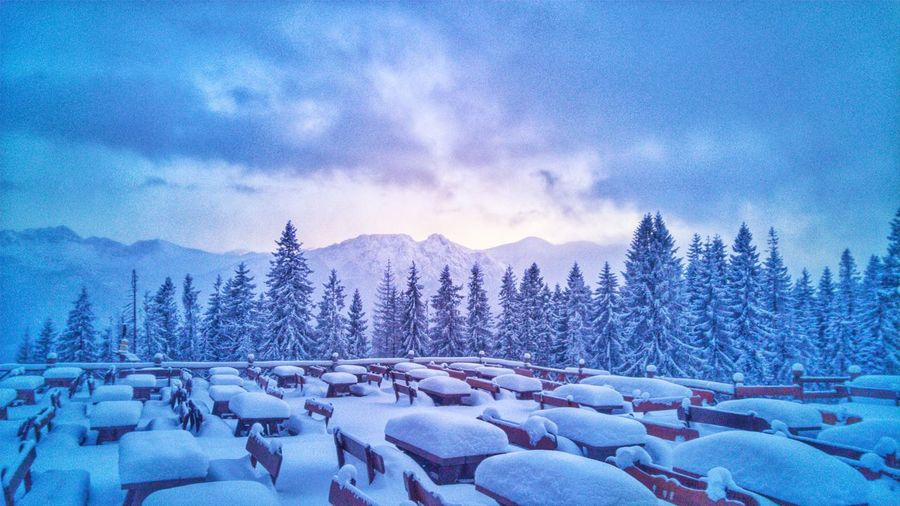 Winter Tatry Snow Mountain Nature Scenics Sky Landscape Zakopane Zakopane, Poland Cold Temperature Tree Beauty In Nature