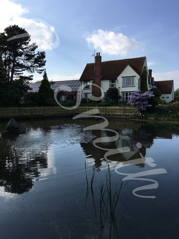 StHelenasHospice Colchester pond House reflections EyeEmNewHere
