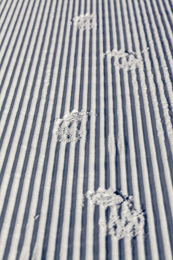 Snow Winter Traces Learn & Shoot: Leading Lines It's Cold Outside Q wie Quadratlatschen