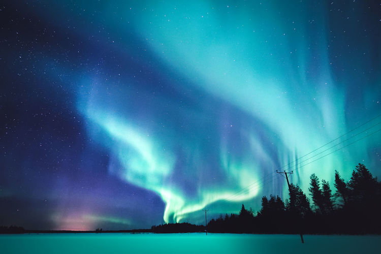 Night smoke Beauty In Nature Sky Night Scenics - Nature Astronomy Star - Space Tree Tranquility No People Tranquil Scene Nature Low Angle View Silhouette Northern Lights Aurora Borealis Snow Winter Landscape Scenics Outdoors Freshness Lapland Finland Travel Enjoying Life