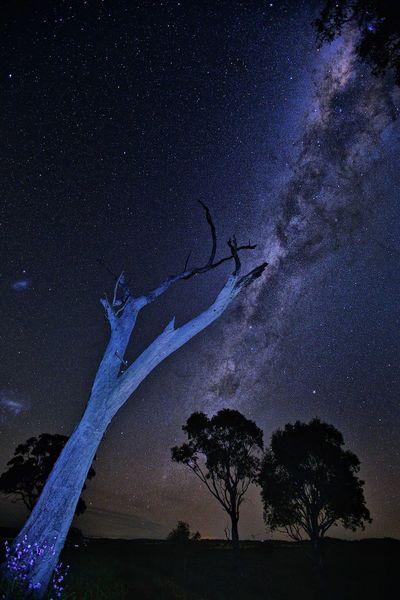 It is the season of the southern hemisphere galaxy