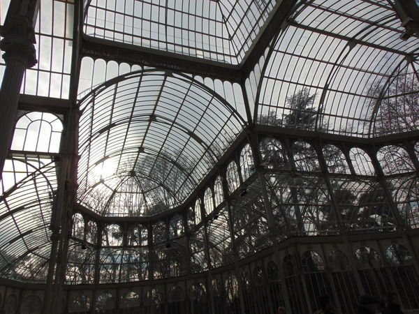 Pattern Indoors  No People Sky Day Architecture Greenhouse Built Structure Low Angle View Tree Reflection Tranquility Forest Nature Idyllic SPAIN Palace Palace Garden Palace Of Culture Palacio De Cristal Madrid Madrid Spain Madrid, Spain El Retiro Retiro Park The Architect - 2017 EyeEm Awards