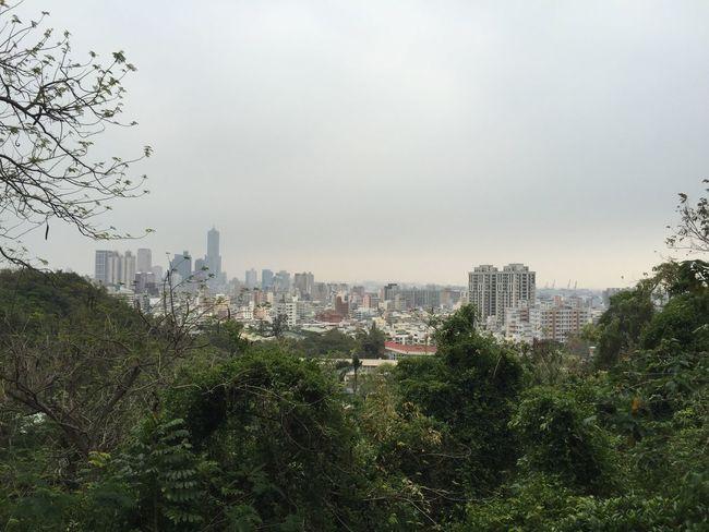 Mountain 風景 壽山