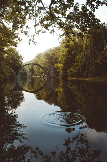 Beauty In Nature Bridge Day Devils Bridge Fairytale  Growth Kromlau Kromlauer Park Lake Nature No People Outdoors Reflection Reflection Reflection_collection Scenics Sky Tranquil Scene Tranquility Tree Water