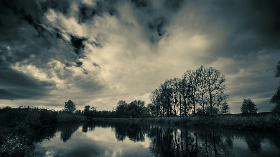 Contrast Black And White Photography Black And White EyeEm Nature Lover Outdoor Photography Outdoors Trees Tree_collection  Lake Lakeside Germany Southwest Germany Sudwest Outside Photography Landscape With Whitewall Landscapes With WhiteWall