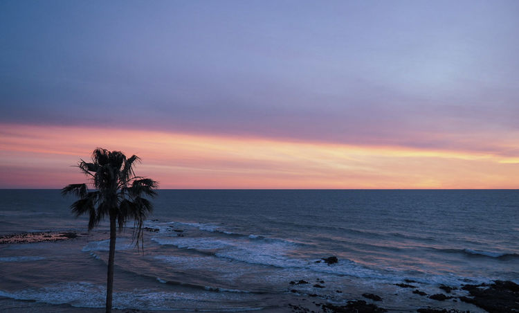 Sunset Mexico Rosarito Baja California Beach Beauty In Nature Beauty In Nature Cloud - Sky Horizon Horizon Over Water Mindfulness Nature No People Palm Tree Scenics - Nature Sea Sky Sunset Tranquil Scene Tranquility Water