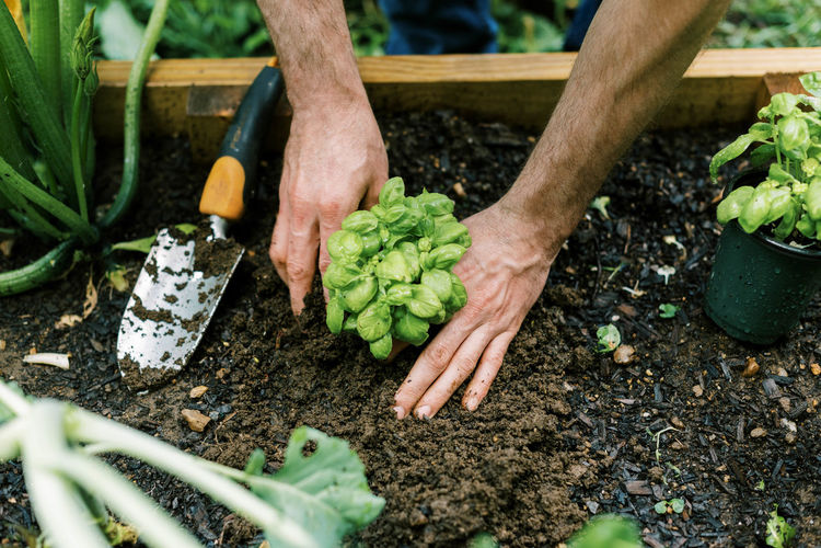 Man preparing food in garden