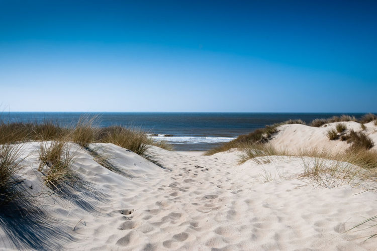 a sunny day at the beach in the summer Beach Beauty In Nature Blue Clear Sky The Great Outdoors - 2017 EyeEm Awards EyeEmNewHere Grass Horizon Over Water Landscape Marram Grass Nature No People Outdoors Sand Sand Dune Scenics Sea Sky Summer Sunlight Tranquil Scene Tranquility Travel Destinations Vacations Water