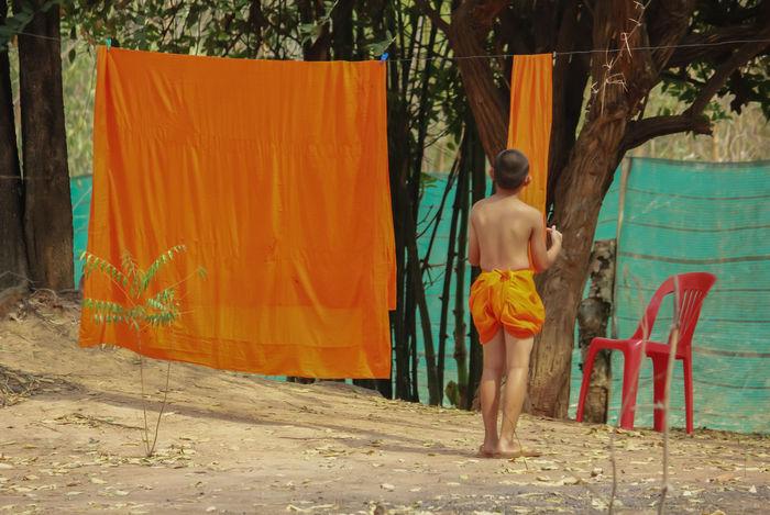 Boy Boys BoysBoysBoys Buddha Buddhism Buddhist Buddhist Temple Budha Temple Day Girl Girls Monk  Monks Novic Novice Novice Monk Novice Monks Novice Photography Novicephotograph Novicephotographer Novices Novices... Thai Thai Temple Thailand