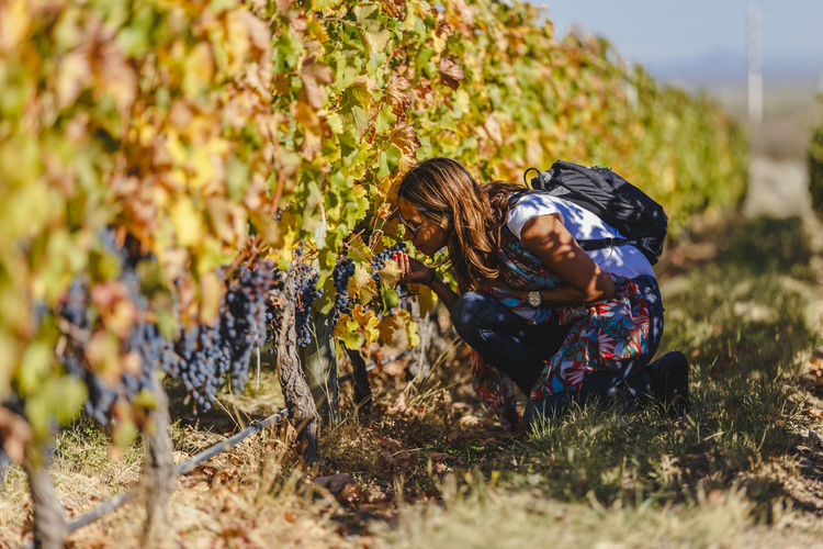 Woman smelling grapes at vineyard
