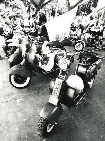 Moped Mopeds Rally Day Rally Rally Mopeds Retro Retro Style High Angle View Indoors  Motorino Motorini Raduno Vespamania Vespa