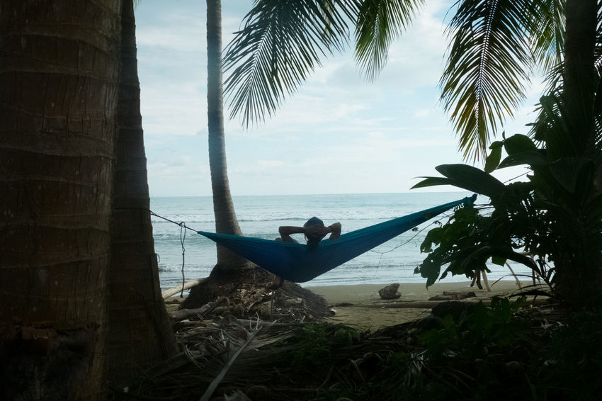 Costa Rica Nature Palm Tree Beach Beauty In Nature Chillout Hammock Jungle Ocean Pacific Ocean Relax Wildlife
