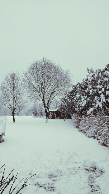 Snow in uhlerdtown pa View